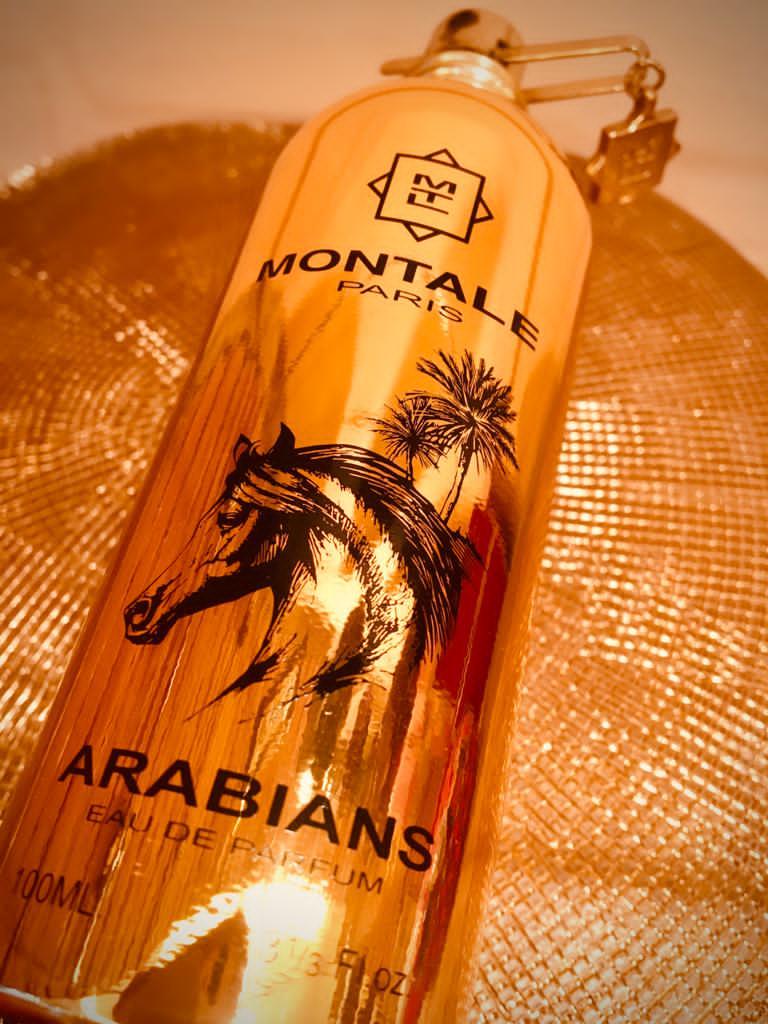 Montale - Arabians